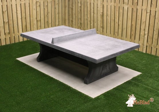 Table de ping-pong béton anthracite